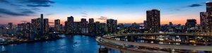 Gotowe spółki - licencje i koncesje - biznes międzynarodowy