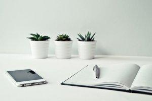 Czyste spółki - zarząd i jego odpoweidzialność